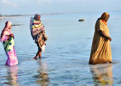 Culture d'algues à Jambiani, Zanzibar : Les femmes vont vérifier les cultures dès 6 heures du matin.