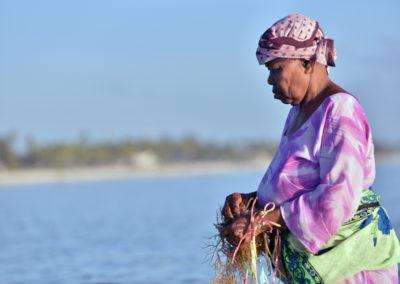 Culture d'algues à Jambani, Zanzibar : Les femmes vont vérifier les cultures dès 6 heures du matin.